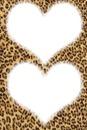 Coeur léopard