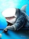 tiburon billar