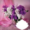 parfum de lilas