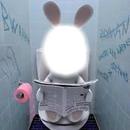 lapin au wc