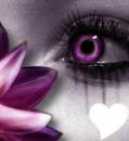 oeil fleur