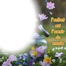 fleur une photo