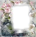 Cadre avec des fleurs