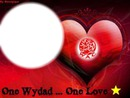one wydad one love