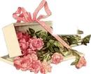 roses cadeau