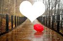 Caminho do coração