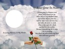 if a rose grows in heaven