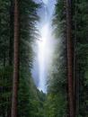 #forest #landscape, #waterfall