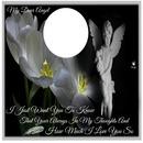 dear angel