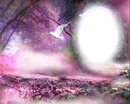 fond rose et violet