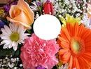 le fleurs