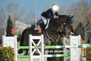 Cadre concours Cheval