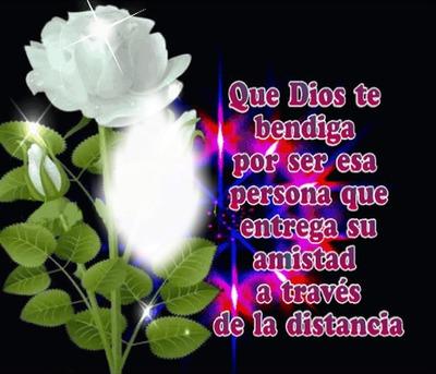 Rosa blanca con texto de amistad