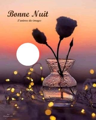 Bonne nuit à tous mes amis (es)