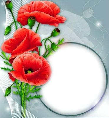 Cadre-fleurs rouges-fond bleu