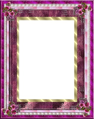 cadre prune parme fleurs rose