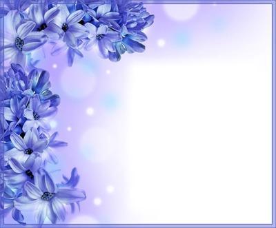 Cadre - fleurs bleues