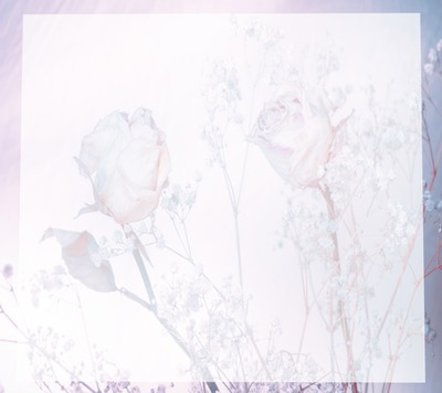 Kristall Rose