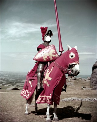 chevalier rose