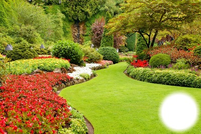 Beautiful garden #1