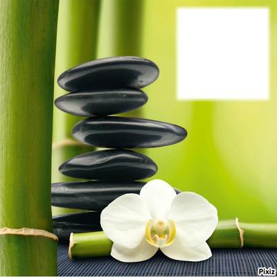 esprit zen