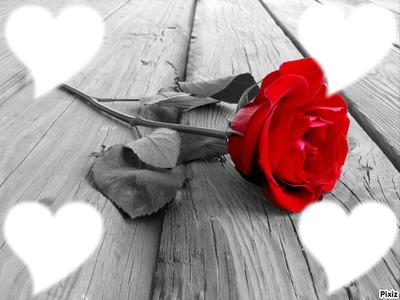 rose entouré de coeur