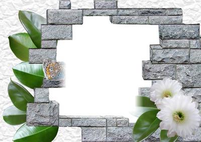 Mur de pierre-fleurs-nature