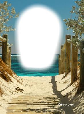 sand beach walk