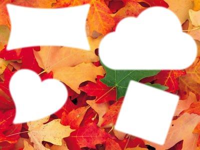 Les feuilles melanges