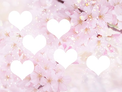 fleurs 6 photo
