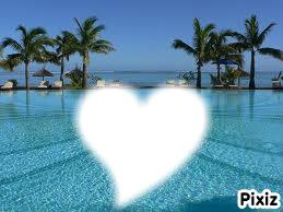 au coeur des palmiers