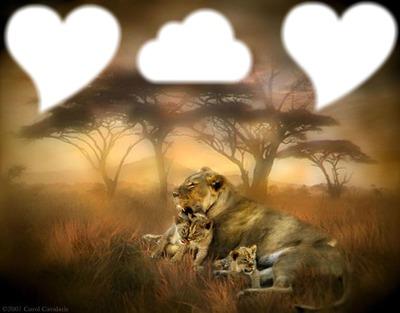 la mère des lionceaux