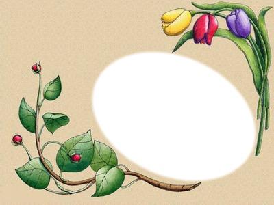 Cadre Hinano Tulipe