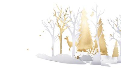 hiver doré 2