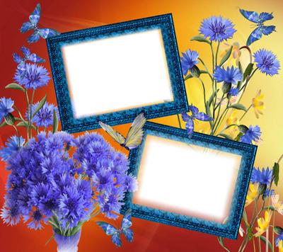 Cadre fleurs papillons
