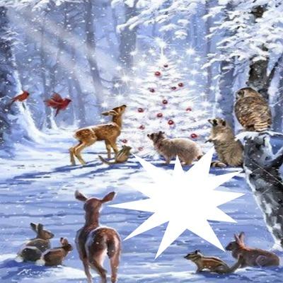 cadre neige animaux 1 photo