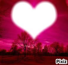 le coeur et la foret de vos reve