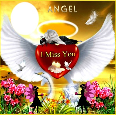 angel i miss you