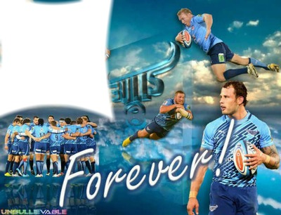 Photo Montage Blue Bulls Pixiz