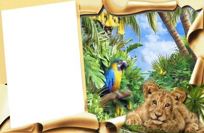 Exotika, rám, papoušek, lvíče