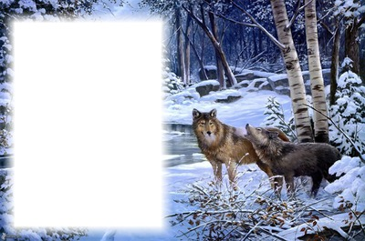 Téli táj 1 fotóval