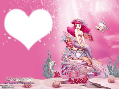 cadre de princesse ariel