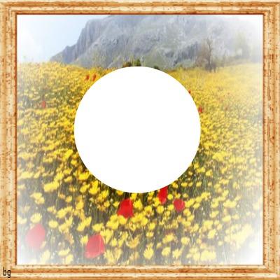 cadre bois fond fleur 1 photo