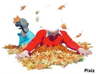 feuilles d`automne