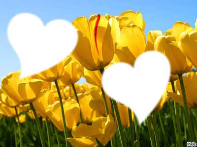 amour de printemps