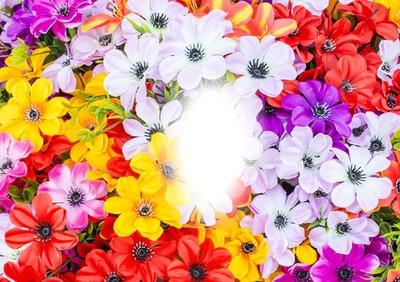 Cc Flores silvestres