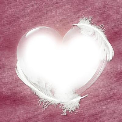 cadre coeur avec plumes