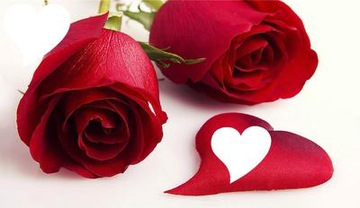 Una Rosa Para Ti Picmix