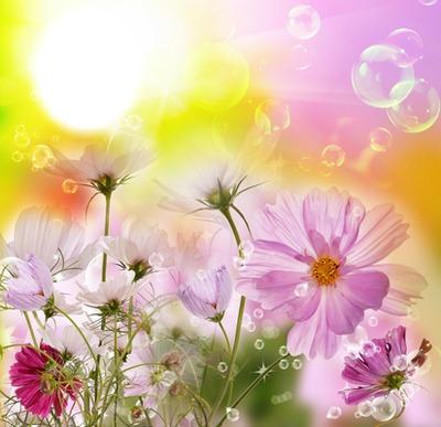 Beautiful flower .