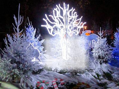 cadre 1 photo décor Noël sapins et biche